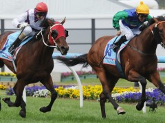 Racing's 2014 Kiss of Death – February 22