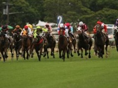 Queen Elizabeth Stakes preview